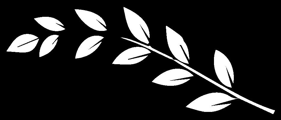 oliveira esq